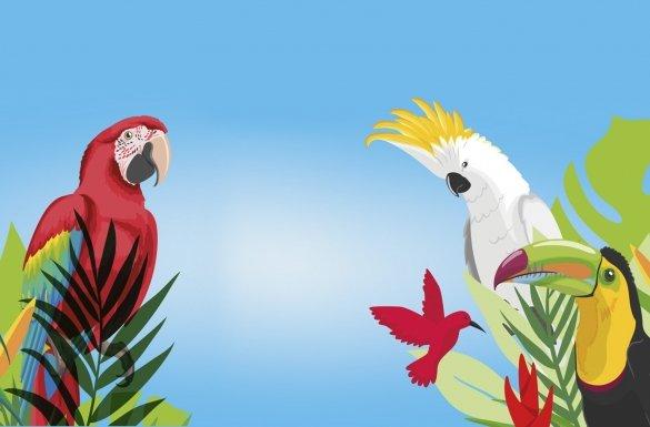 I Pomorska wystawa papug i ptaków...