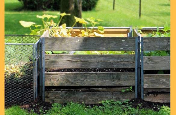Październik w ogrodzie, część 3